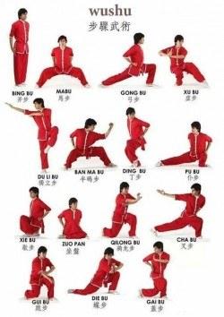 Wushu Poster