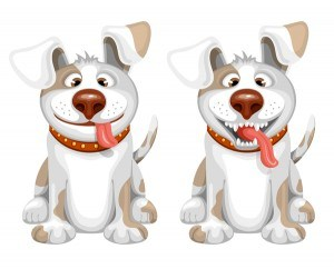 Two dog cartoon vector