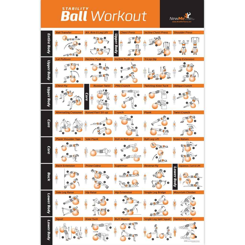 Exercise Ball Poster Laminated