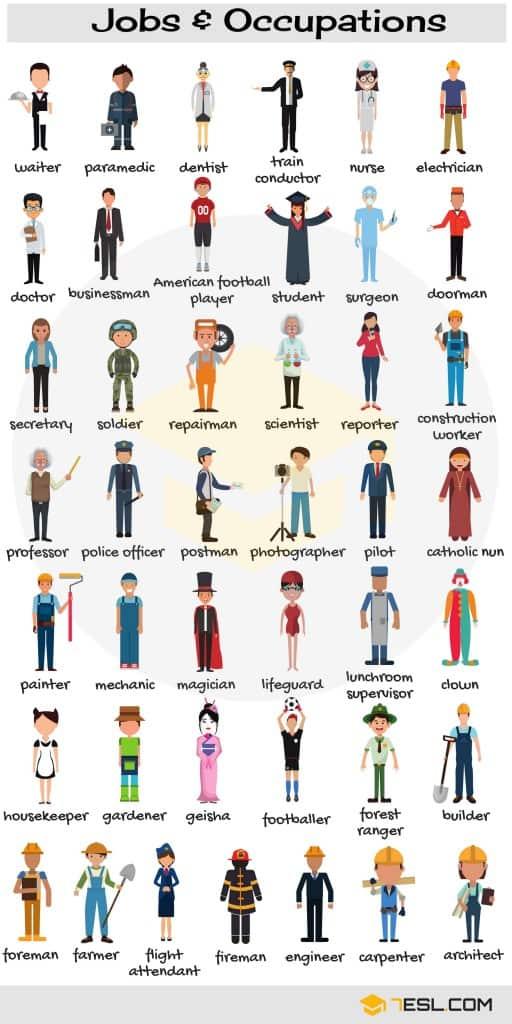 Jobs Vocabulary