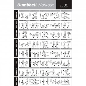 NewMe Fitness Dumbbell Workout Exercise Poster