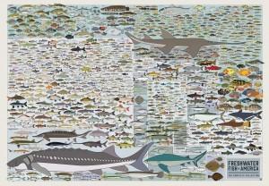 FRESHWATER FISH OF AMERICA