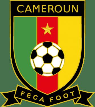 Federation Camerounaise de Football & Cameroon National Football Team Logo
