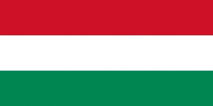Hungary Flag&Arm&Emblem
