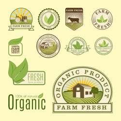 Organic fresh food labels vector