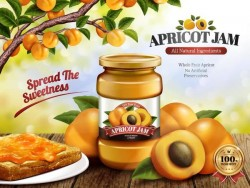 Apricot jam poster template vector