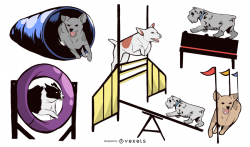 Dog Agility Equipment Design Set