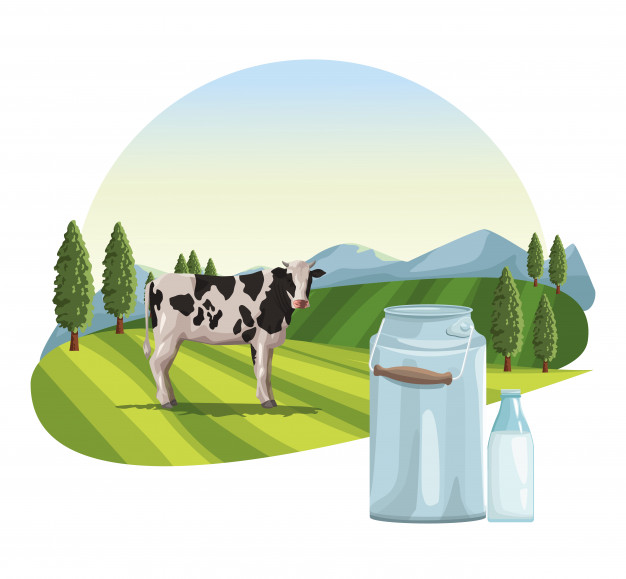 Farm milk natural