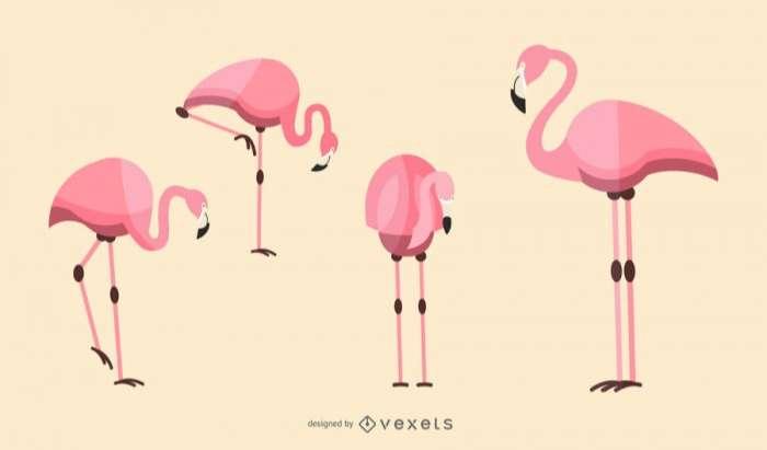 Flat Flamingo Illustration Set