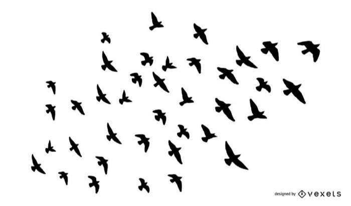 Flock of birds silhouette set