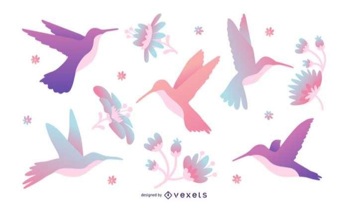 Pastel tones hummingbird illustration set