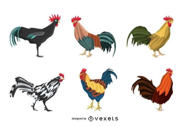 Rooster illustration set