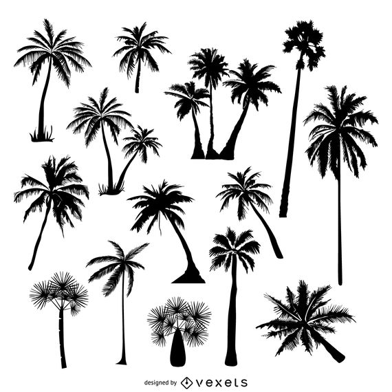 Collection of palm tree silhouettes