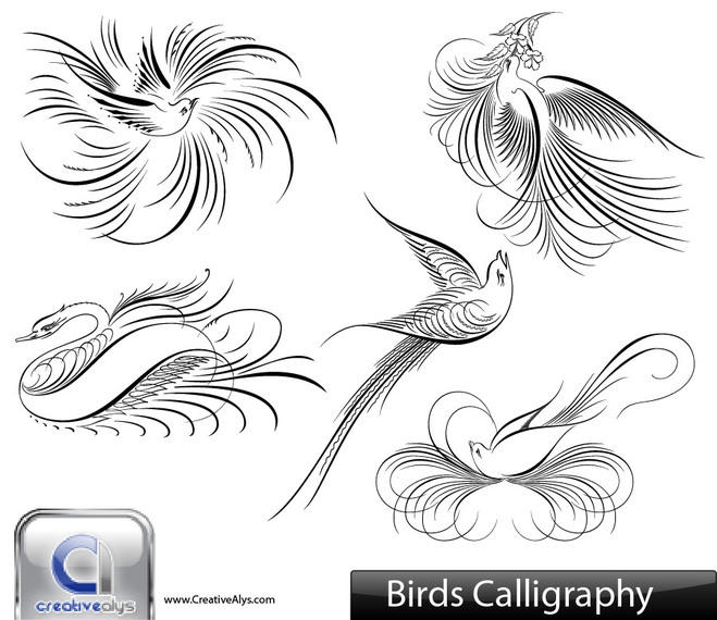 Creative Calligraphic Bird Pack