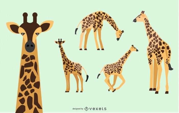 Giraffe Illustration Set