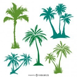 Green palm trees set