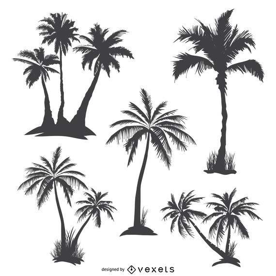 Monochrome palm trees silhouettes