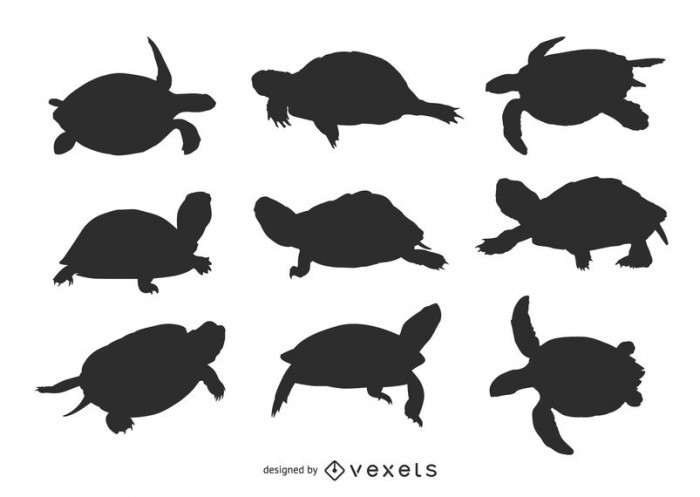 Set of turtle silhouettes