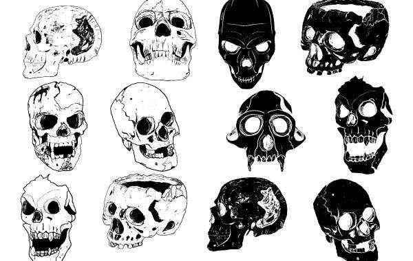 12 Skull Set