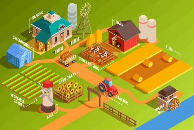 Isometric farm infographics