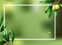 Border template with olive plant