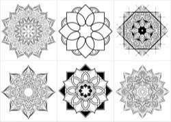 Floral Style Set of Mandalas