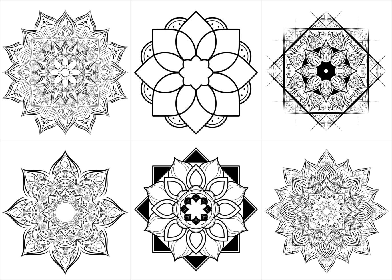 Floral Style Set of Mandalas
