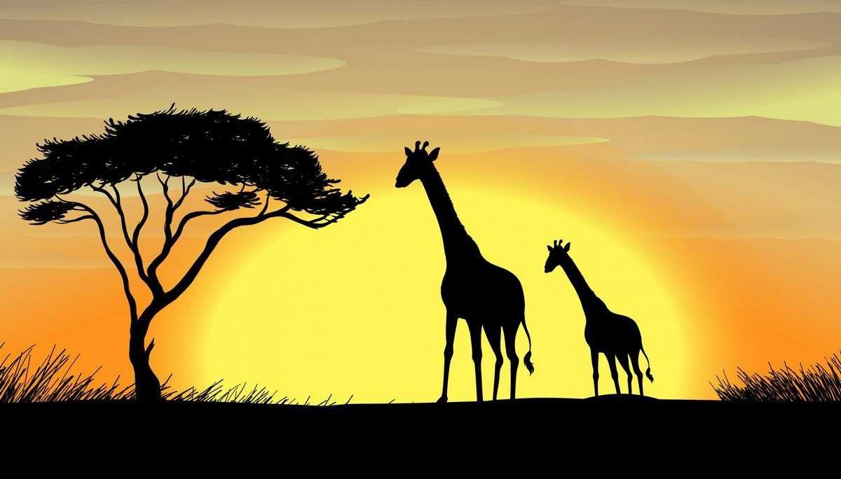 Giraffe in a beautiful nature