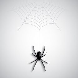 Halloween spider background