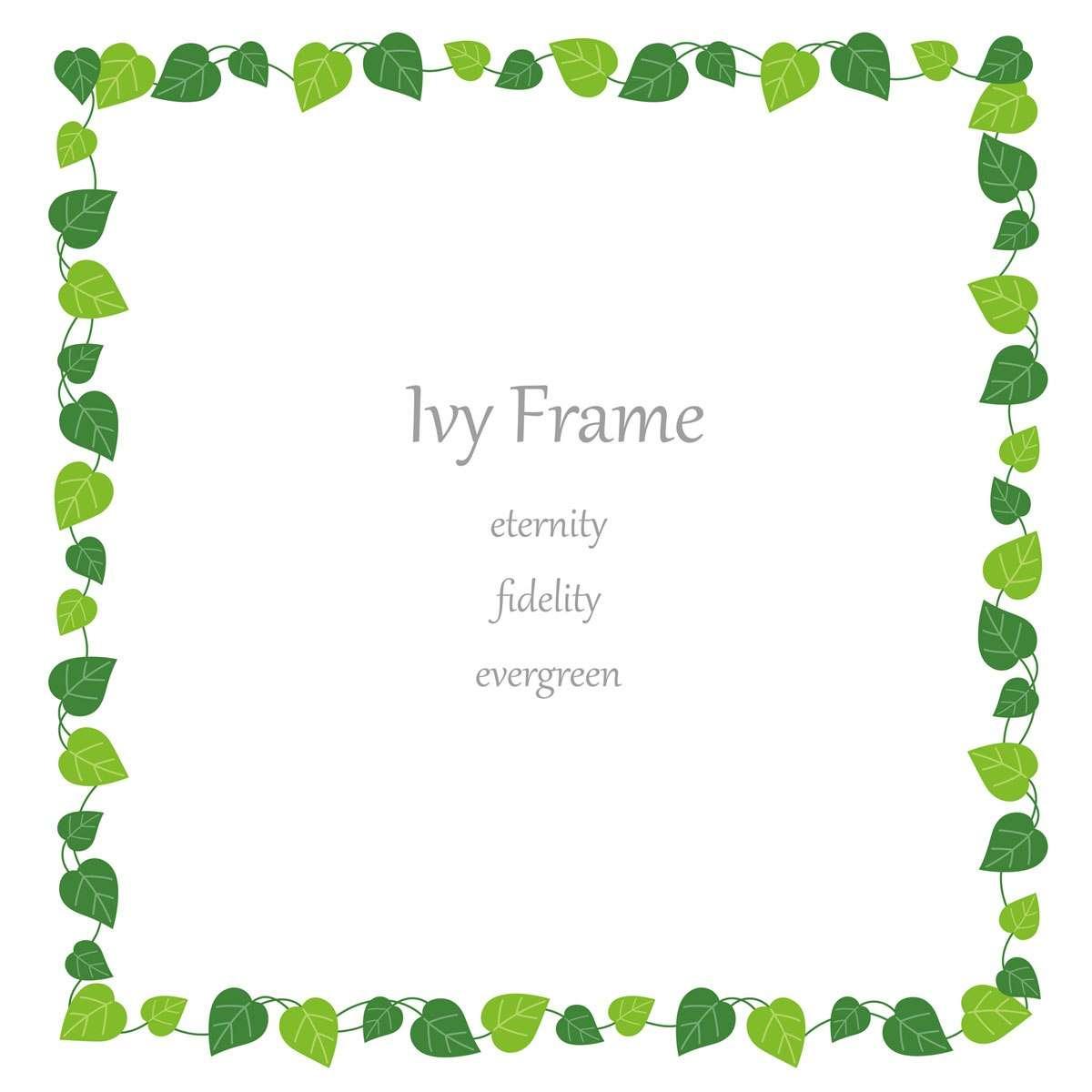 Square ivy frame
