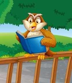An owl reading a blue book