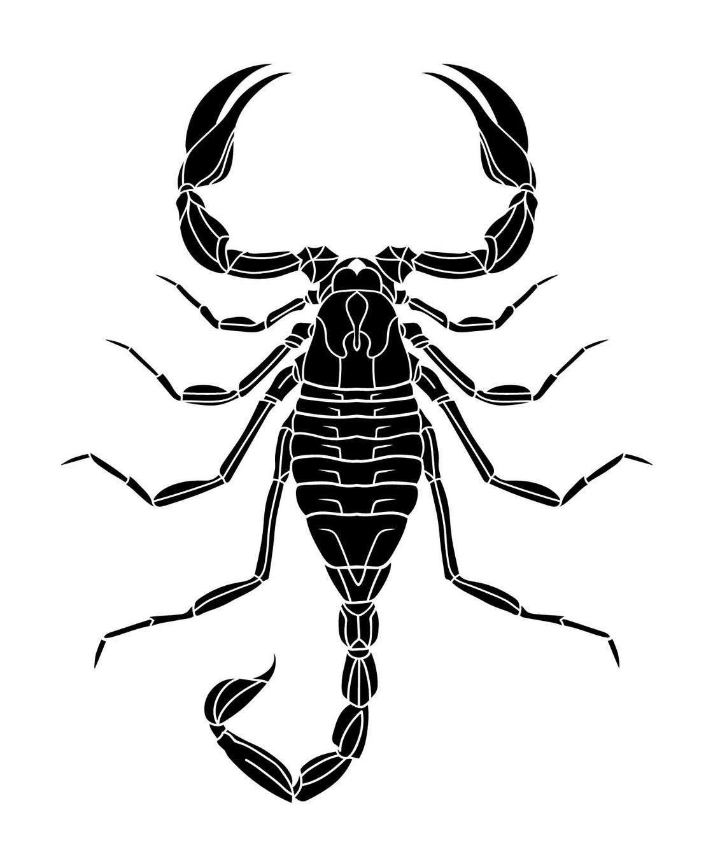 Black Scorpion Tattoo