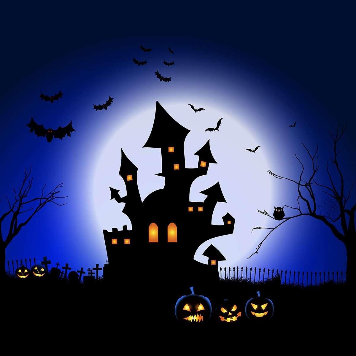 Halloween spooky landscape