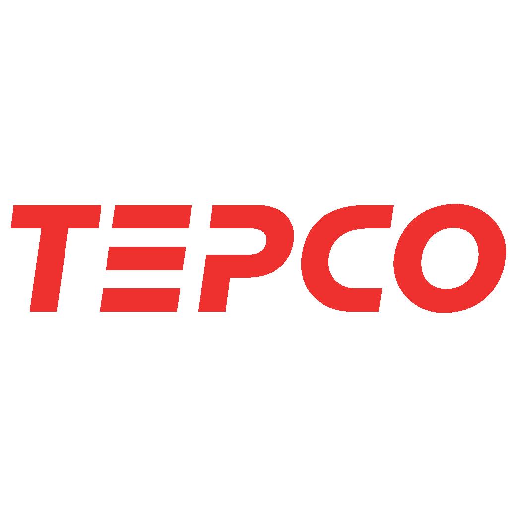 TEPCO Logo – Tokyo Electric Power