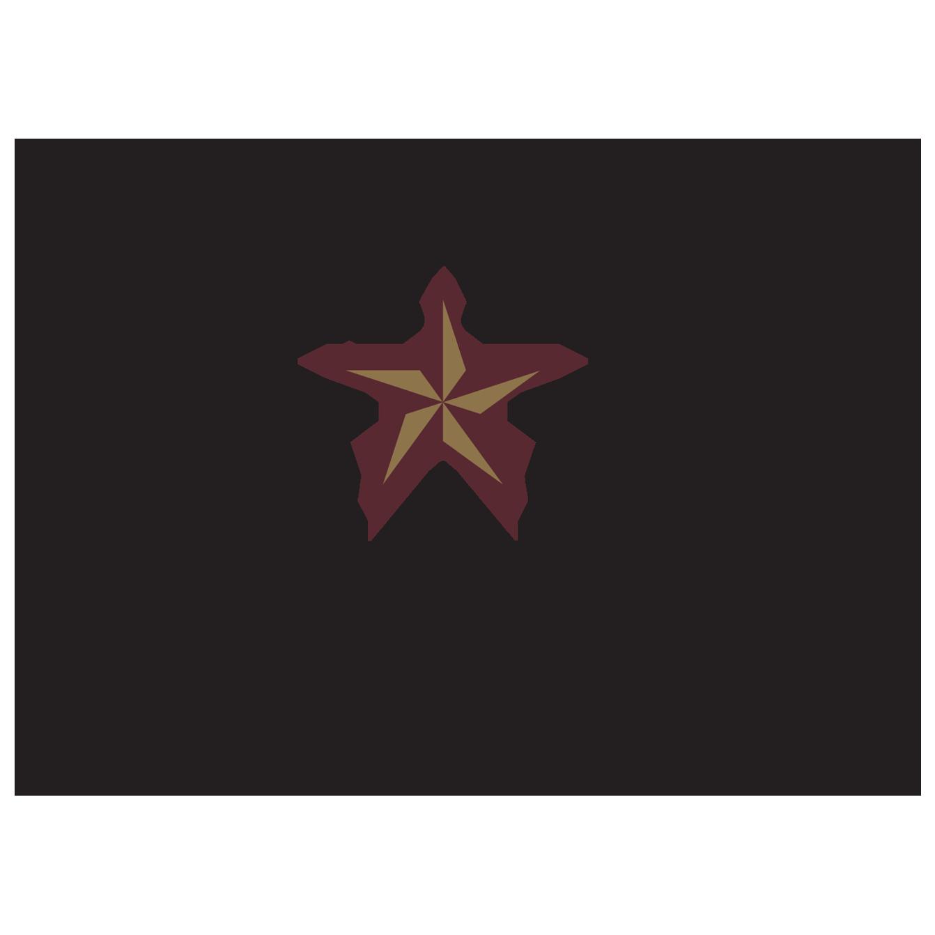 TSU – Texas State University Logo