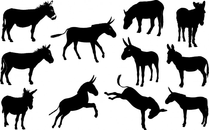 Donkey silhouette Vector
