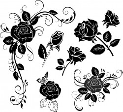 Hand painted flowers Vector