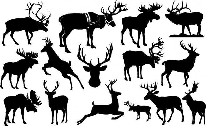 Reindeer silhouettes Vector