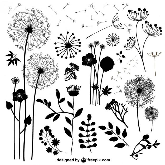 Wild flowers vectors   Vector | Free Download